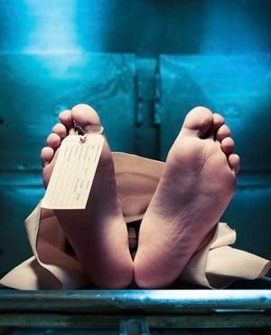 News24.com | Meer as 1 100 ongeïdentifiseerde liggame in lyke in Gauteng in die boekjaar 2018/19 - Jack Bloom van die DA