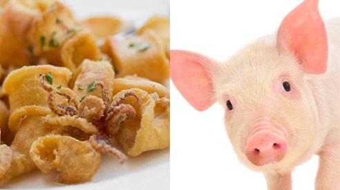 Calamari Pig Rectum, Fake Foods