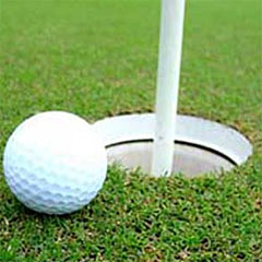 Golf ball near hole (Gallo)