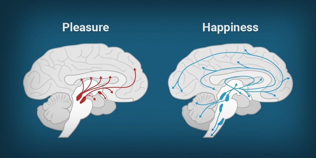 This is why our phones are making us miserable: happiness isn\'t the ...