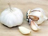 Erase earache with garlic