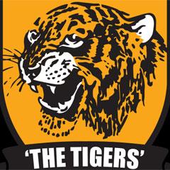 Hull City logo (File)