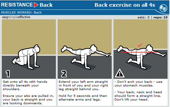 back exercises on all 4's