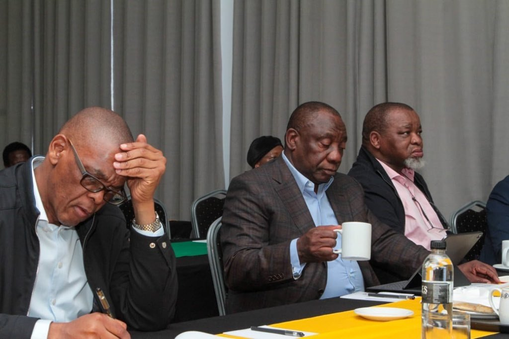 ANC NEC meeting. Picture: ANC via Twitter