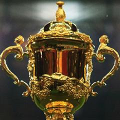Webb Ellis Cup (File)