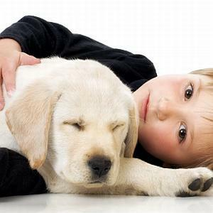 6 tips on your new puppy | Health24