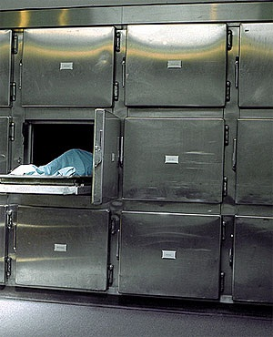 Image result for morgue in gauteng