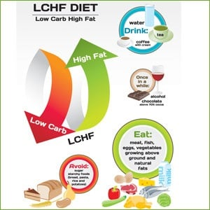 The low carb, high fat diet rules, banting