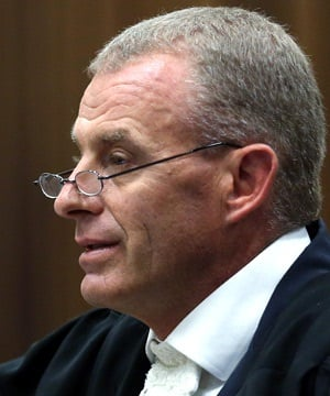 State Prosecutor Gerrie Nel cross-examines Oscar Pistorius during his murder trial in the North Gauteng High Court. (Themba Hadebe, Pool)