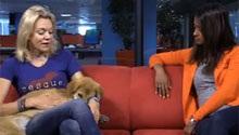 Rupee, the dog who climbed Everest