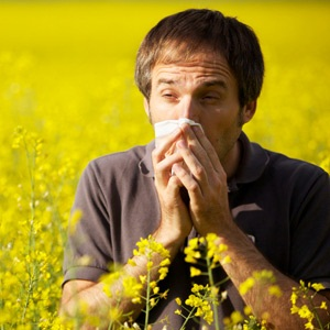 Man in field at risk of hay fever allergy