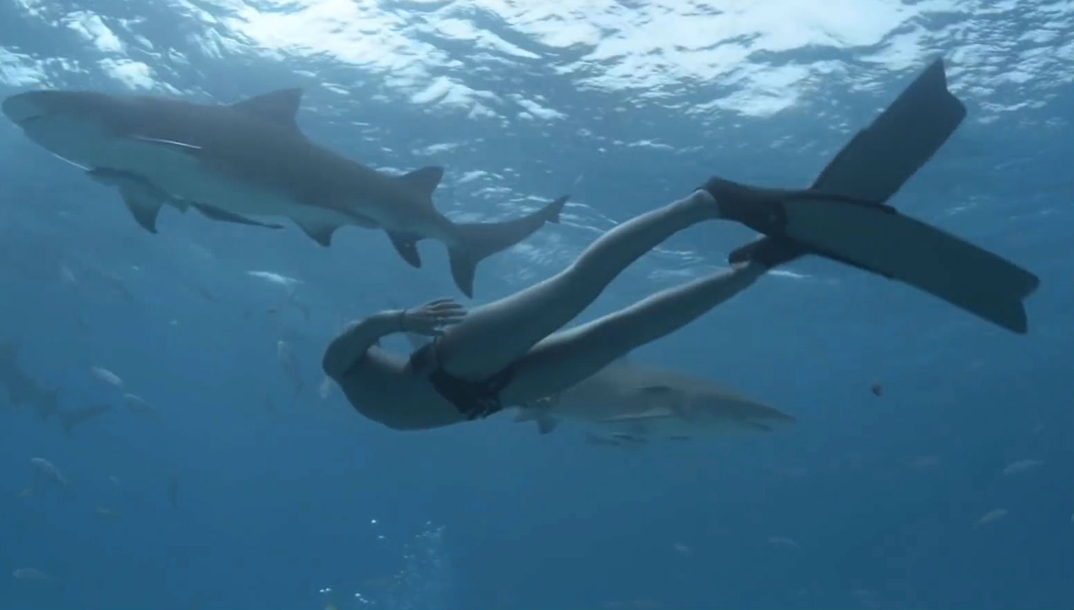 Women nude with sharks