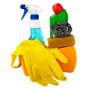 Items for spring cleaning