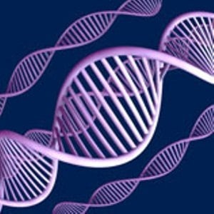 DNA strand illustrates how HIV infection begins
