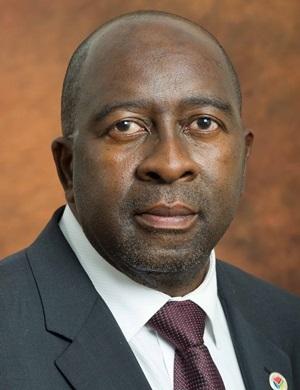 Finance Minister Nhlanhla Nene. (Treasury)