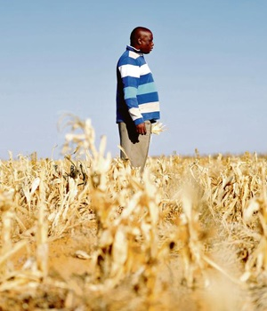 Mosalashuping Kgomo at his farm near Delareyville, North West. He is among the farmers in the area who have been hard hit by the current drought. PHOTO: Muntu Vilakazi