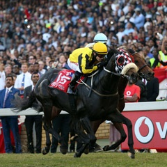 Egged on by the thousands that lined Greyville Racecourse on Saturday 4 July, Power King (left) edges out Punta Arenas to take victory in the 2015 Vodacom Durban July's feature race. (Gameplan Media)