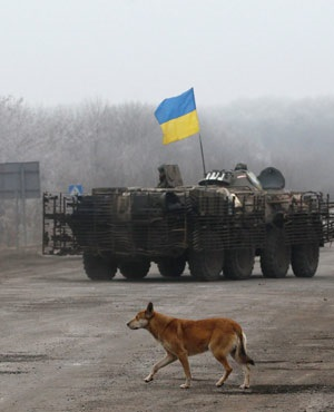 A dog walks near a Ukrainian IFV on the road between the towns of Dabeltseve and Artemivsk, Ukraine. (Petr David Josek, AP)