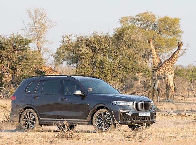 BMW X7 MalaMala memories