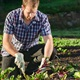 Urban food farming: changing the way we eat