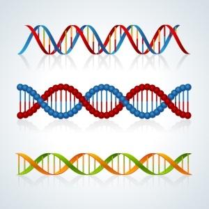 DNA molecule from Shutterstock
