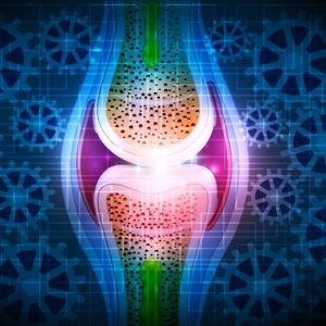 Knee joint from Shutterstock