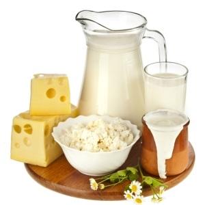 dairy,milk,cheese,yogurt,eggs,nutrition,healthy,