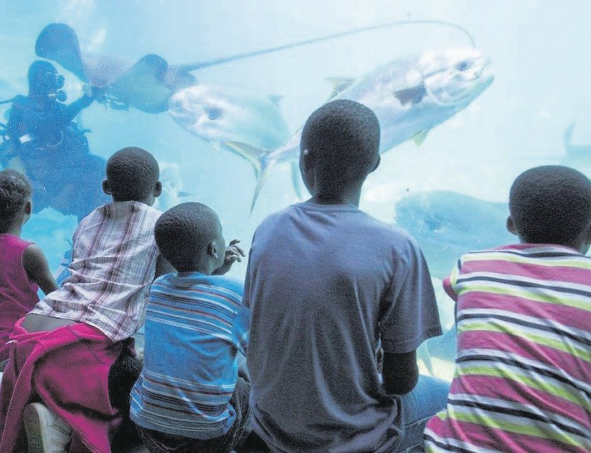 PHOTO: supplied