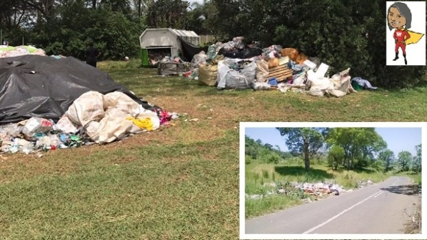 The pop-up dump site that appeared recently on Woodhouse Road near the Ascot Wedding and Conference Centre.