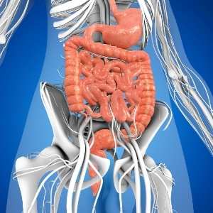 digestive system affected by coeliac disease