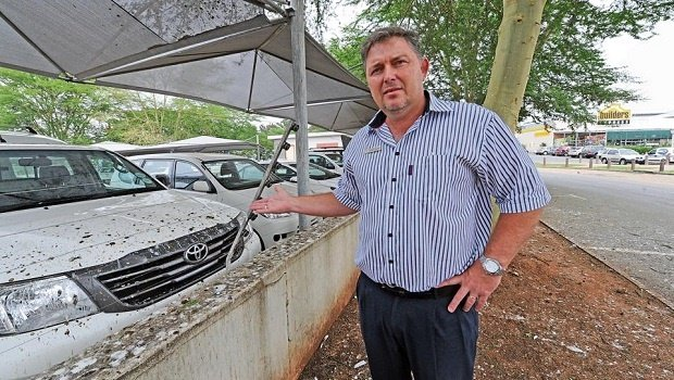 Toyota general manager Russell Goosen stands under the trees the egrets have now relocated to at night and points to the new cars covered in bird droppings.
