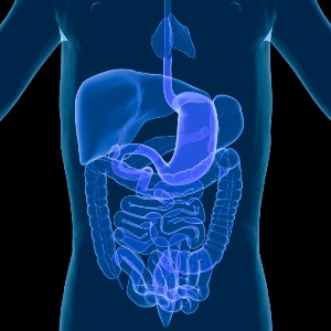 digestive system with ulcerative colitis