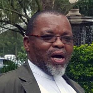 ANC Secretary General Gwede Mantashe. (Karabo Ngoepe, News24)