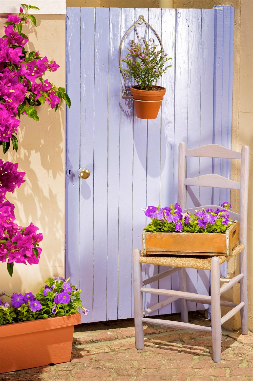 home, decor, garden, trends