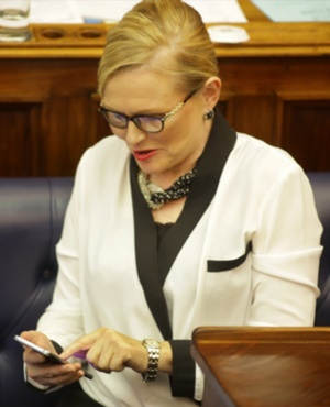 Helen Zille. (Gallo Images)