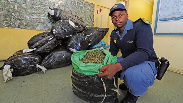 Hammarsdale police spokesperson Constable Mbonisi Khomo shows the contents of one of the 17 bags of dagga worth R1,2?million that were recovered.