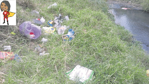 Dumping in the Dorpspruit near Jesmond Road has become uncontrollable.