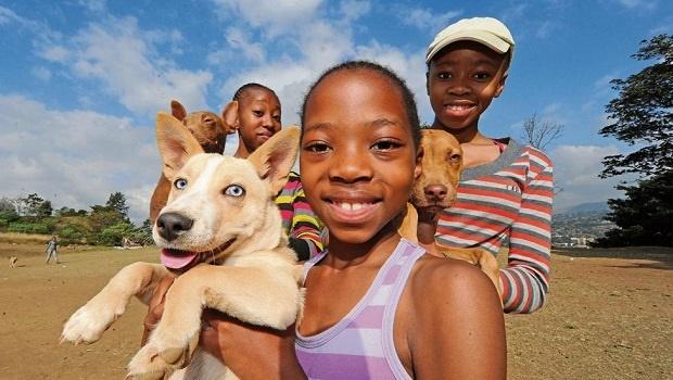 Siphokazi Shabinga (left, 17) with her puppy Tint, Sibongakonke Shabinga (9) with her dog Angela and Sbusisiwe Shabinga (14) with her puppy Brownie at Woodlands Primary School for free rabies vaccinations.