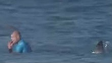WATCH: Shark knocks pro-surfer off board during J-Bay competition