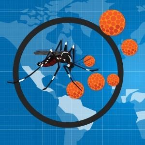 Zika – where next?