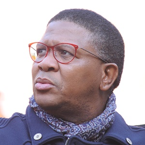 Fikile Mbalula (Gallo Images)