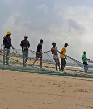Small batches of sardines were being netted along the Durban coastline yesterday. It is hoped the sardines will reappear today. In the picture, a fishing crew unravel their net after an unsuccessful attempt by a ski-boat to try and bag the lucrative