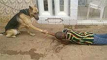 #BidoungChallenge | Cameroonian sports minister mocked on Twitter