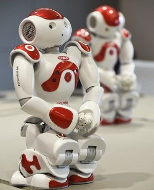 Nao's robot Zora before its presentation in Liege. (John Thys, AFP)