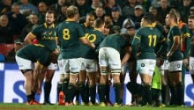 'Not a lot wrong' with the Springboks