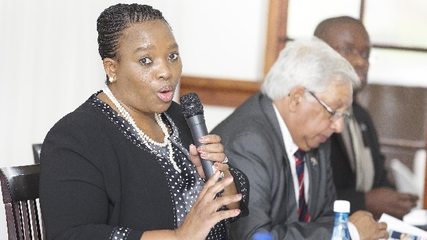 One of two separate high court interdicts, which came before Judge Pete Koen in the Pietermaritzburg High Court on Wednesday, was launched by the MEC for Co-operative Governance and Traditional Affairs, Nomusa Dube-Ncube.