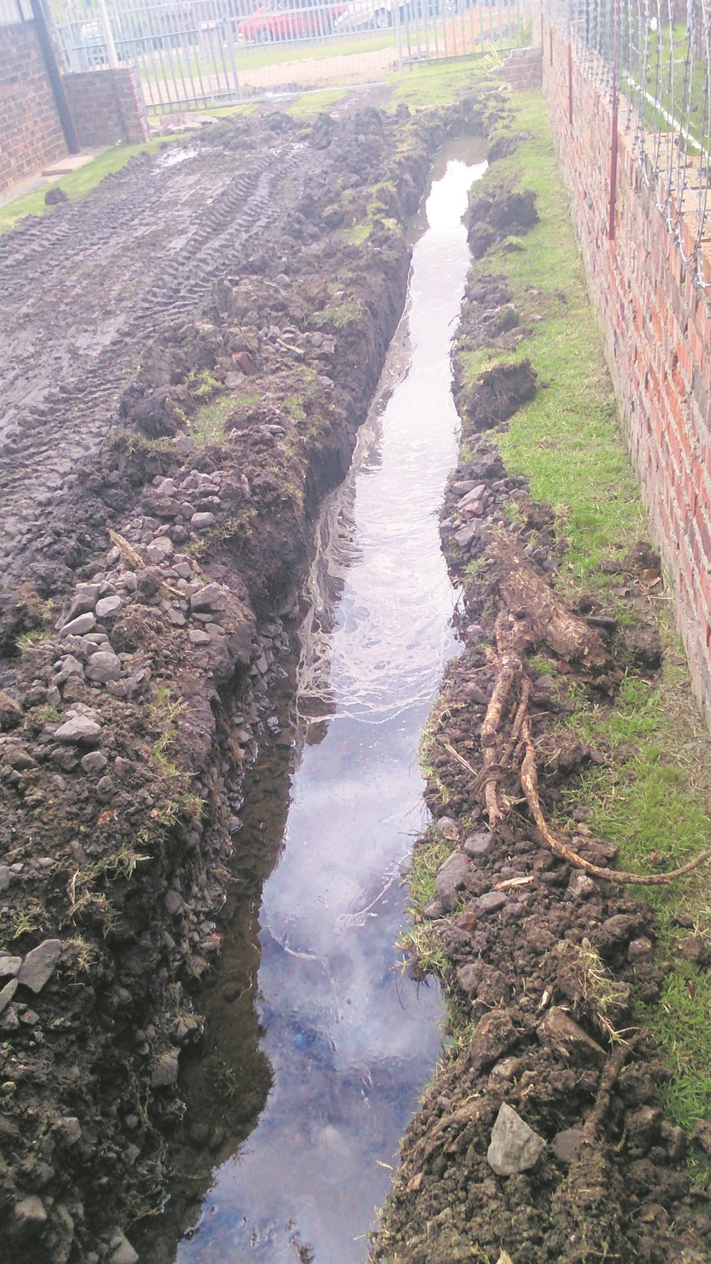 Raw sewage or a water leak? While the Kouga Municipality blames excess water on an overflowing septic tank, a Wavecrest-resident is adamant that thousands of liters of water are wasted due to a water leak.  Photo:SUPPLIED
