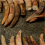 Illegal ivory shipment seized