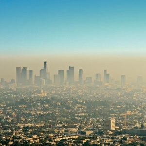 Air pollution is the cause of many diseases.