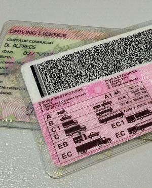 SA driver's licence. (Duncan Alfreds, News24)